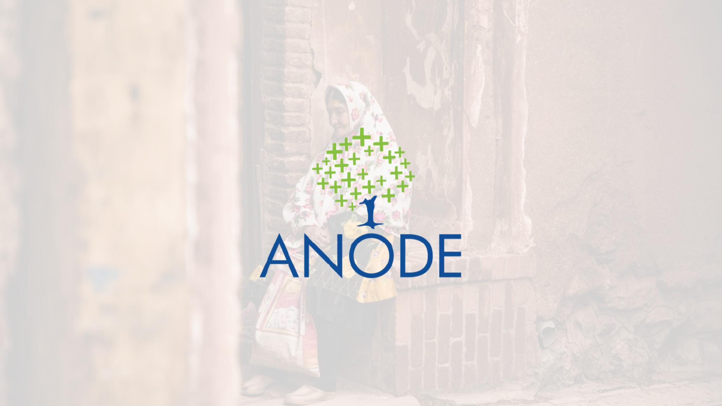 Anode Governance Lab img